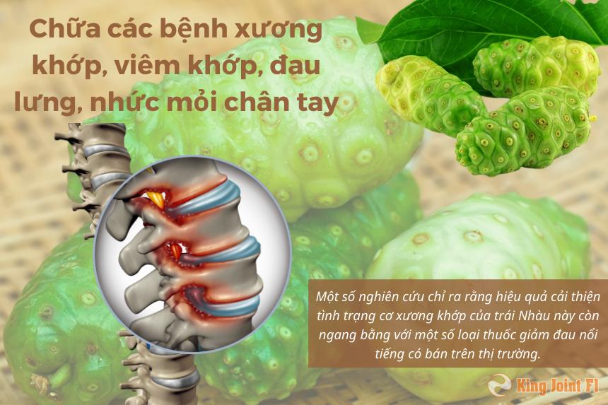 Nhàu chữa các bệnh xương khớp, viêm khớp, đau lưng, nhức mỏi chân tay