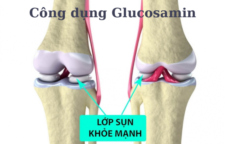 Công dụng của glucosamine
